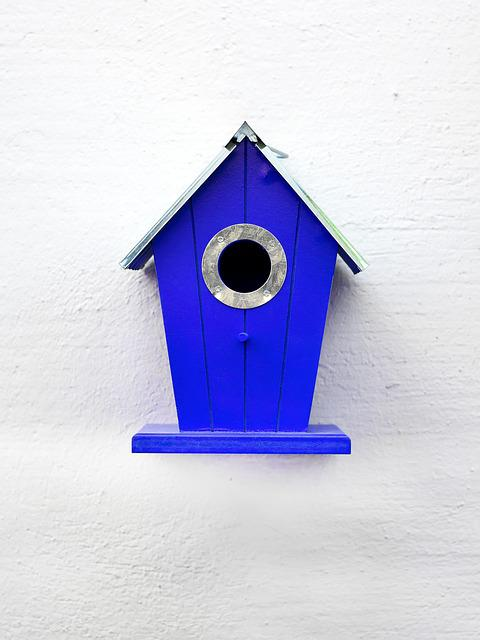 Aviary, Blue, Birds, Nesting Place, Bird Feeder