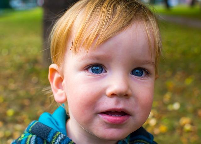 Child, Portrait, Blue Eyes, Cute, Blonde, Bot, Park
