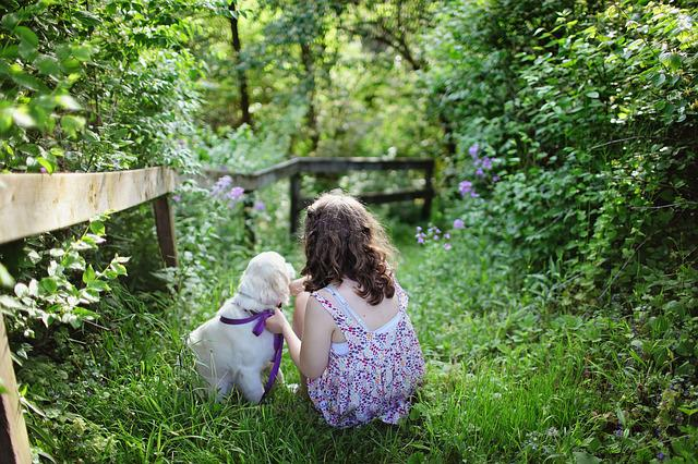 Beautiful, Blue Flowers, Child, Countryside, Dog, Dress