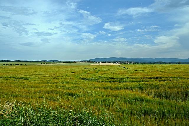 Landscape, Meadow, Grass, Sky, Blue, Southern, Bohemia