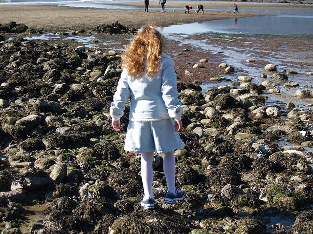 Sea, Seascape, Ocean, Nature Background. Idyllic Seascape: Clean ...