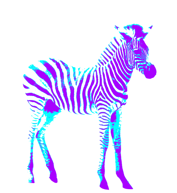 Zebra, Colorful, Art, Creative, Purple, Blue