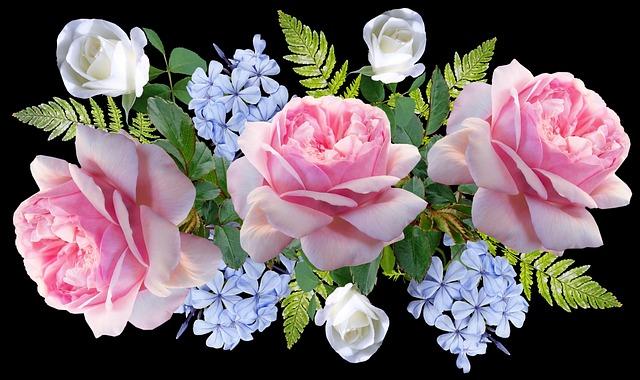 Flowers, Roses, Pink, Plumbago, Blue, Fern, Arrangement