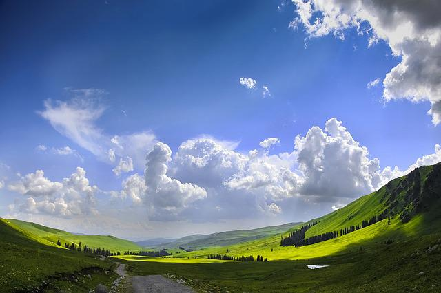 The Scenery, Blue Sky, White Cloud, Grassland