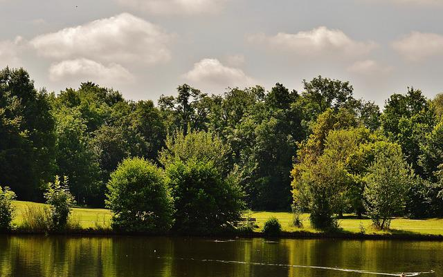 Pond, Waters, Landscape, Trees, Summer, Sun, Blue Sky