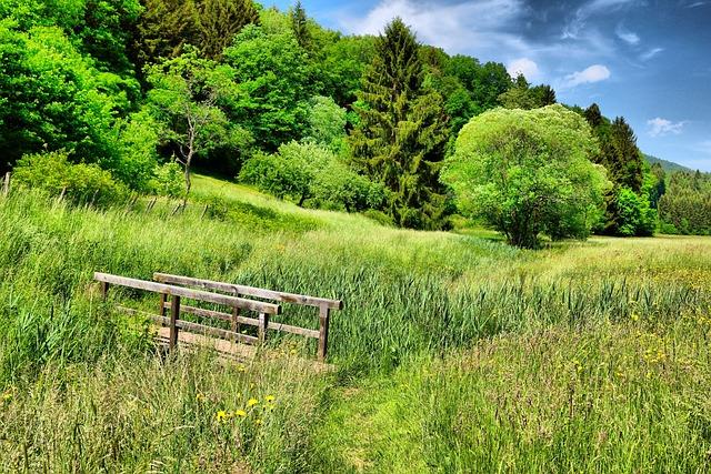 Spring, Green, Tender Green, Blue, Sky, Landscape
