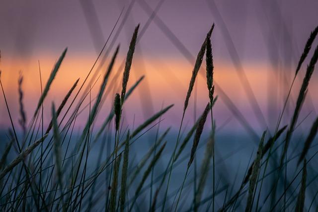 Abendstimmung, Sunset, Landscape, Sea, Blue, Orange