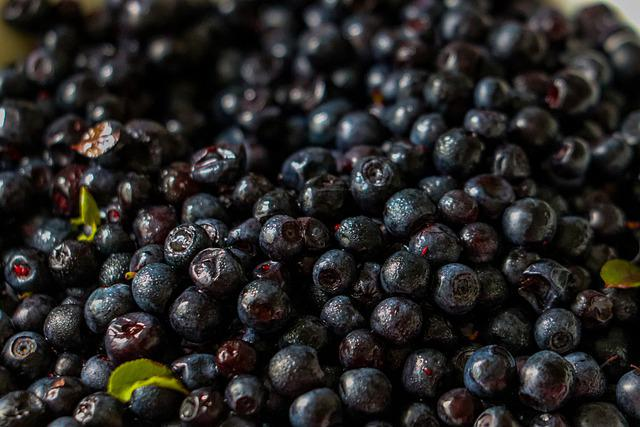 Berry, Black, Blueberry, Food, Vitamins, Sweet