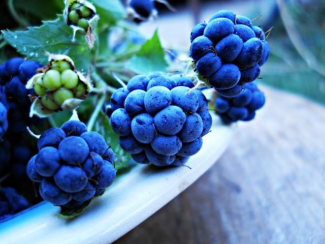 Blueberry, Blue, Green, Berries, Vitamins