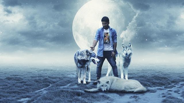 Wolf, Bluemoon, Boy