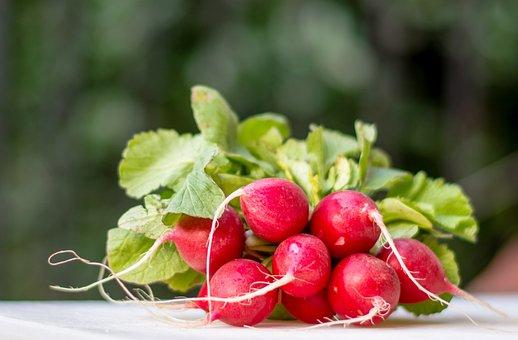 Radish, Radishes, Blur, Bokeh, Red, Green, Root