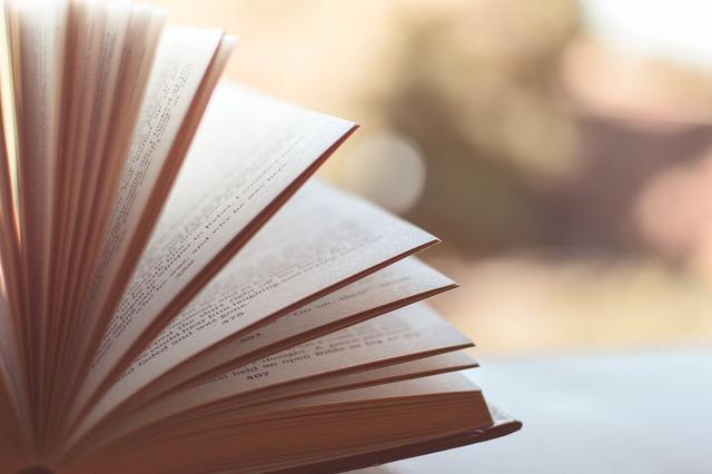 Blur, Blurred, Book, Book Pages, Literature