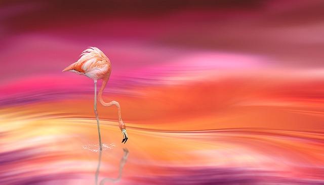 Digital Art, Flamingo, Blur, Blurred Type, Blurred