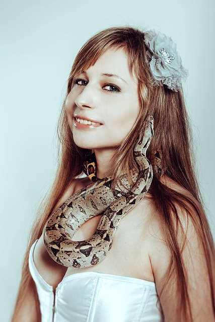 With A Snake, Boa Constrictor, Snake, Tamer, Reptiles
