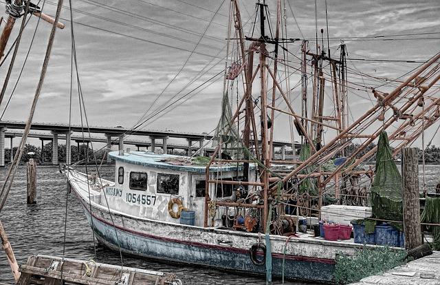 Fishing Boat, Boat, Dogger, Harbor, Ship, Fishing