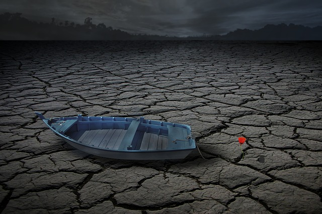 Photomontage, Composing, Boat, Lake, Drought, Flower