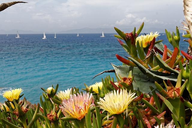 Greece, Rhodes, Sea, Water, Boat, Sailing Boat, Sky