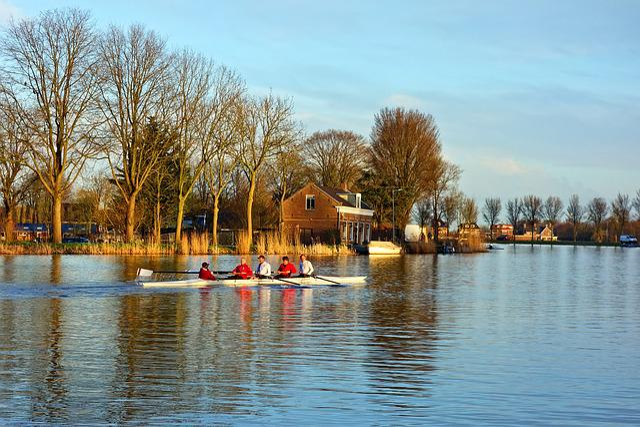 Canoe, Rowing, Sport, Canoeing, Boating, Rowers, Paddle