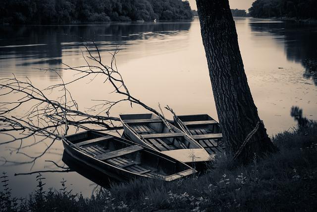 Tisza, Boat, Boats, Backwater, Water, River, Nature