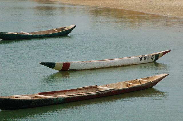 Boats, Canoes, Fishing, Wood