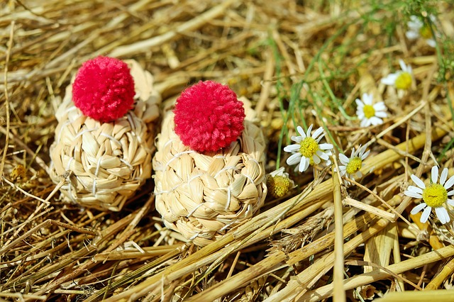 Shoes, Straw Shoes, Straw, Bobble, Red, Nature