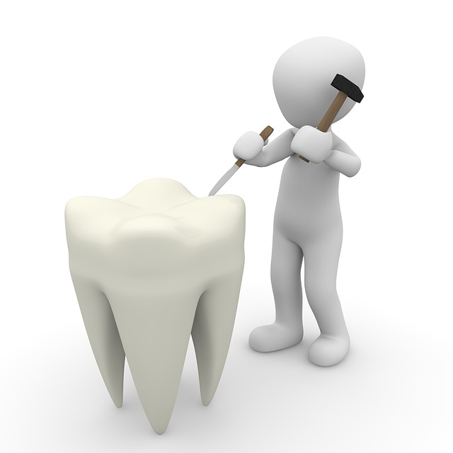 Tooth, Dentist, Close Up, Body Care
