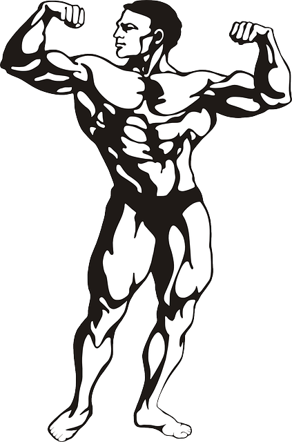 Bodybuilder, Muscles, Man, Human, Strong, Person, Adult