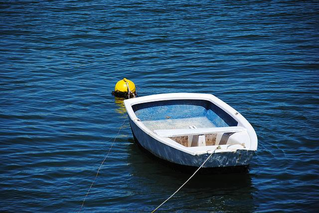 Rowing Boat, Boot, Blue, Sea, Port, Boje, Fender