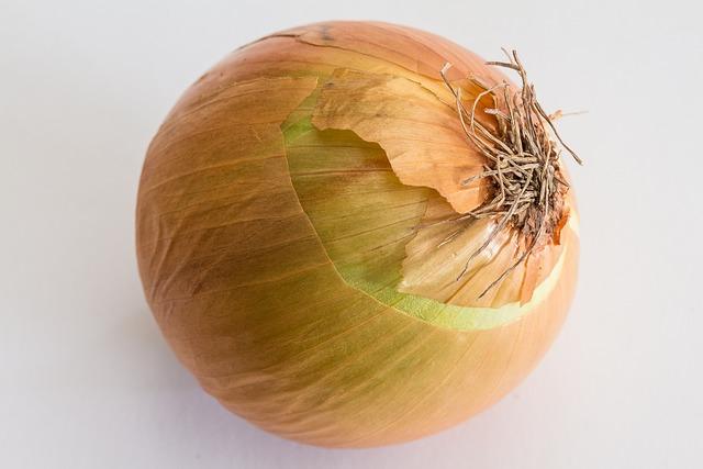 Cream Onion, Kitchen Onion, Onions, Bolle