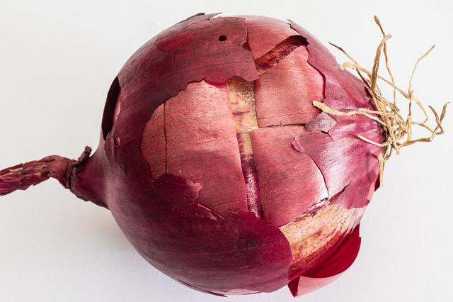 Kitchen Onion, Onions, Bolle, Cream Onion