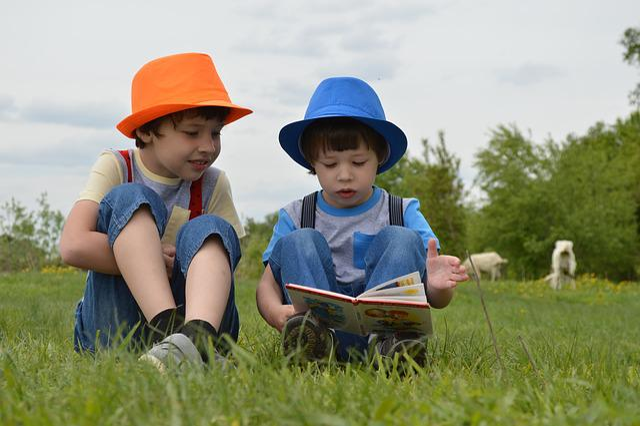 Boys, Meadow, Kids, Hats, Read, Book, Field, Goats