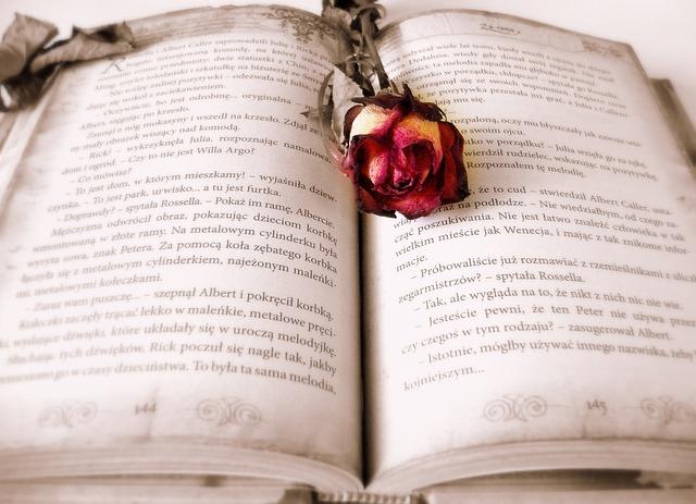 Book, Reading, Love Story, Story, Roman, Novel, Rose
