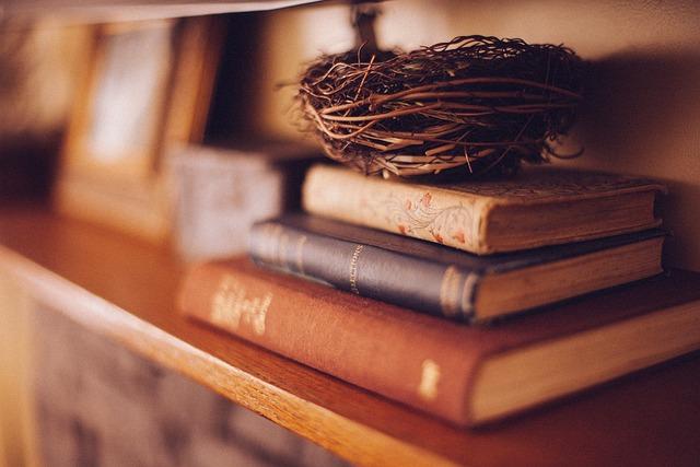Book Shelf, Books, Furniture, Bird's Nest, Decoration