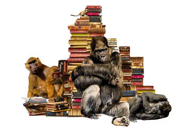 School, Learn, Books, Book Stack, Animals, Ape, Gorilla