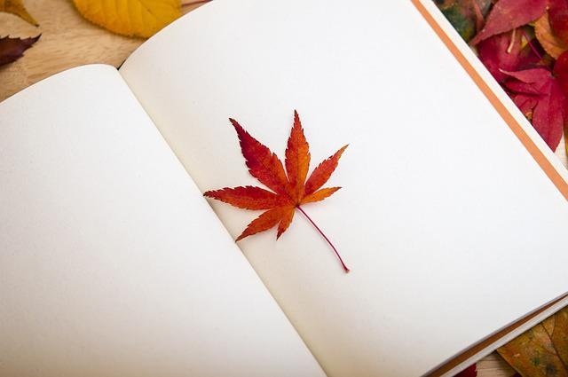 Maple Leaf, Book, Reading, Dear Diary, Bookcase