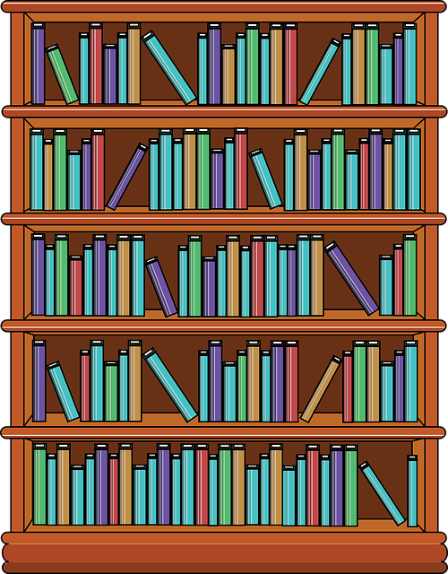 Bookshelf, Books, Library, Education, School, Knowledge