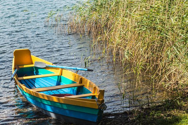Rowing Boat, Boot, Water, Nature, Lake, Landscape