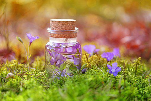 Purple, Magic, Potion, Herbal, Infusions, Bottle