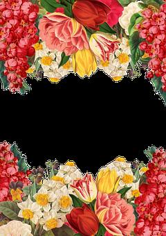 Flower, Frame, Background, Vintage, Roses, Bouquet