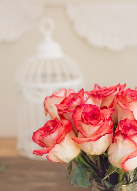 Roses, Bouquet, Pink, Birdcage, Shabby Chic