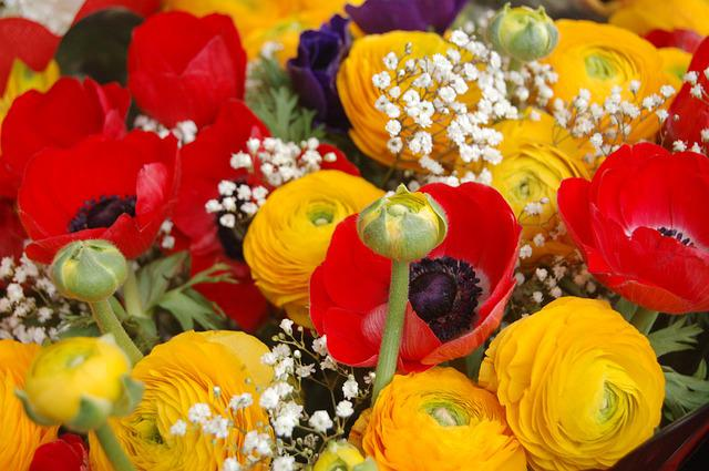 Color, Flower, Floral, Bouquet De Fleurs