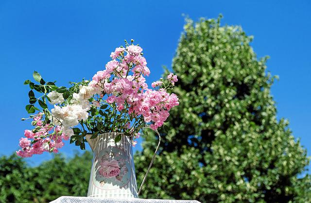 Bouquet Of Roses, Blossom, Bloom, Pink White, Bouquet