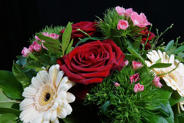 Rose, Red, Flower, Nature, Plant, Bouquet, Floral