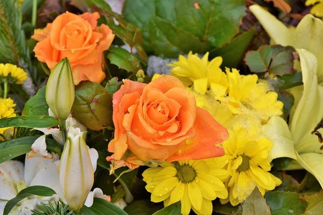 Rose, Bouquet, Bouquet Of Roses, Flowers