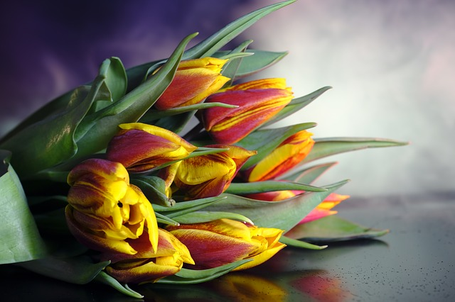 Tulips, Tulip Bouquet, Flowers, Bouquet, Romantic