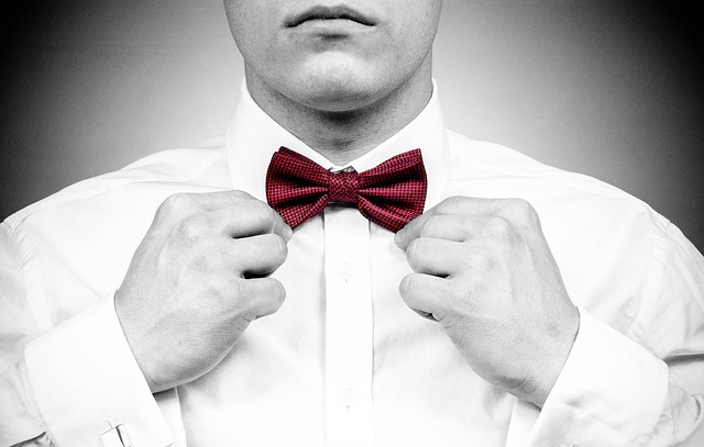Portrait, Bow Tie, Red, Male, Man