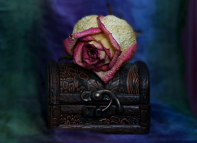 Rose, Box, Dry, Memories