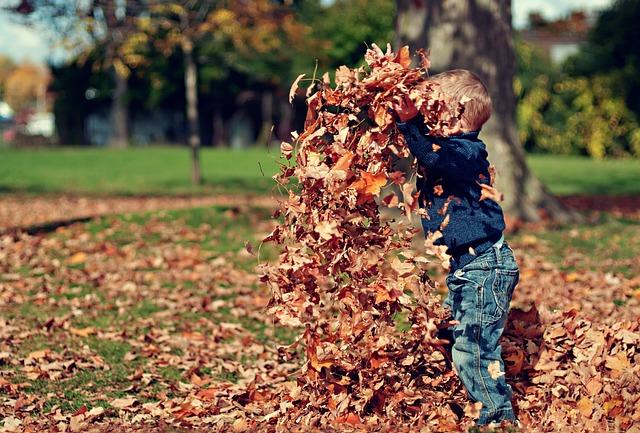 Boy, Playing, Leaves, Autumn, Child, Fun, Childhood