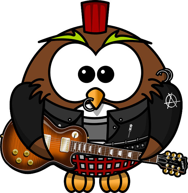 Owl, Anarchy, Animal, Bird, Brads, Funny, Guitar