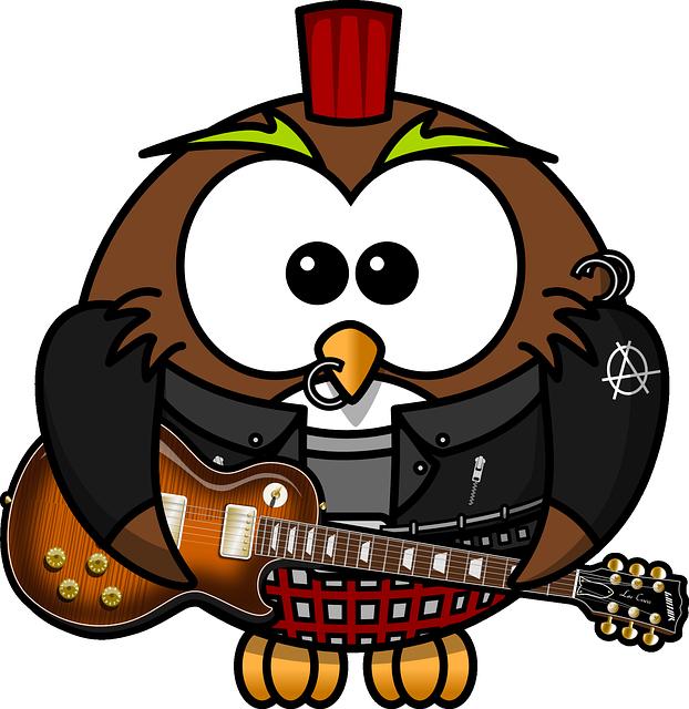 Owl, Anarchy, Animal, Bird, Brads, Funny, Guitar